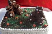 tort dobos pentru copii