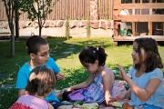 la-picnic-cu-sunfood-13