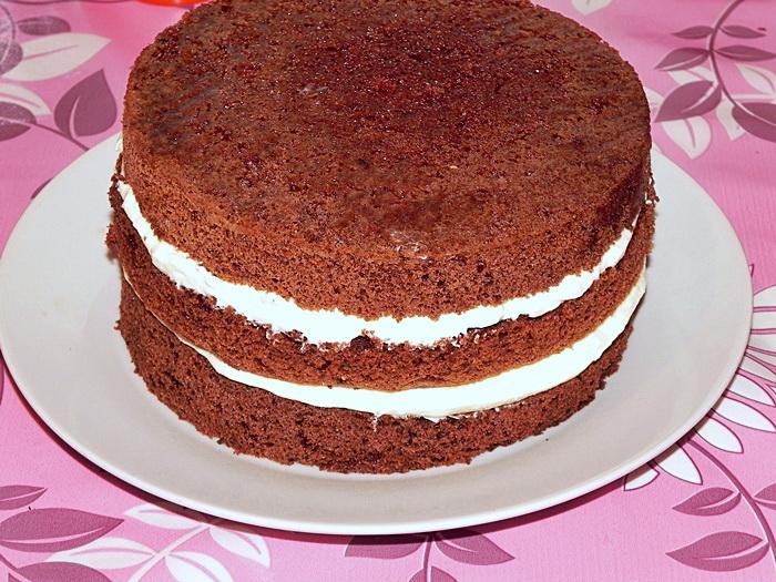 tort cu ciocolata si ricotta 1