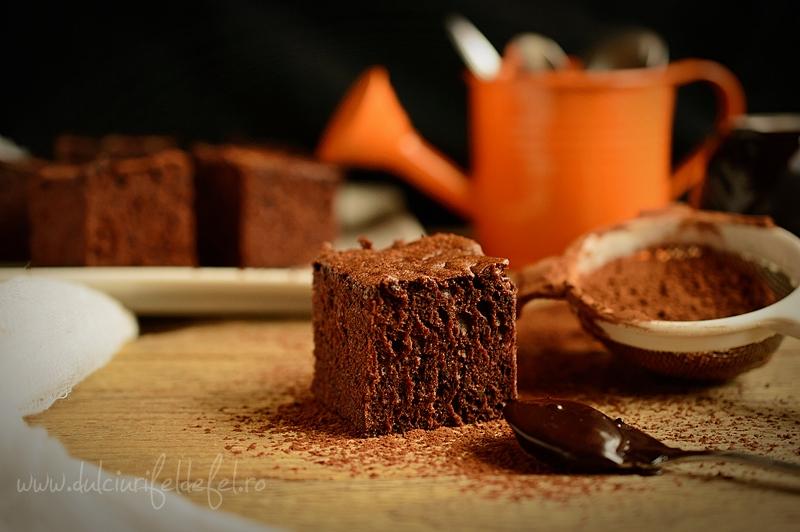 Prajitura simpla cu cacao